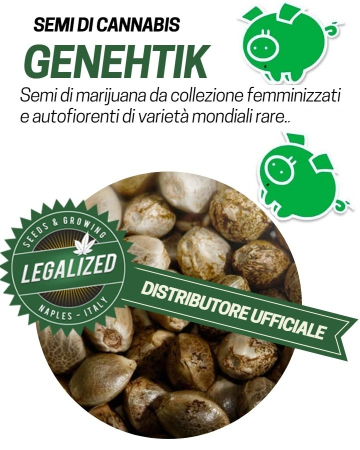 https://www.legalized.it/wp-content/uploads/2017/04/Banca-genehtik-seeds.jpg